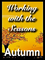 Seasons-Autumn