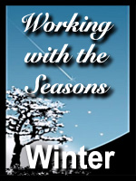 Seasons-Winter